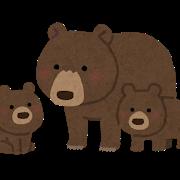 熊の親子のイラスト